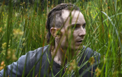 THE SURVIVALIST Long Grass