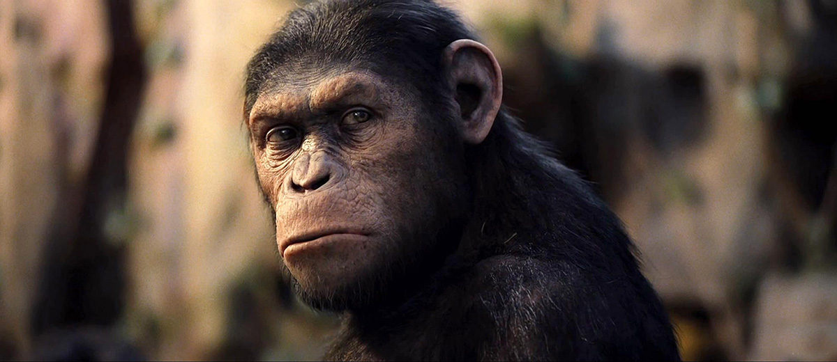 Rise Of The Planet Of The Apes 10